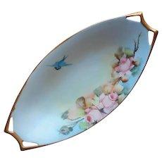 Antique 1917 Hand Painted China Relish Dish Bluebird Blue Bird Roses