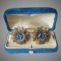 Filigree Flowers Blue Square Stones Vintage earrings Screw Back
