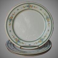 Noritake Amenity 3 Dinner Plates Vintage China