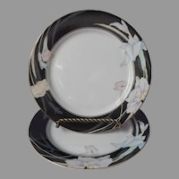 Mikasa Charisma Black 2 Salad Or Dessert Plates