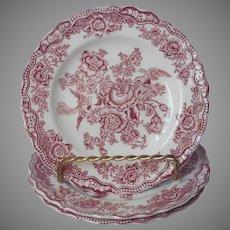 Crown Ducal Bristol Pink Transferware 3 Bread Plates Vintage English China