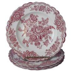 Crown Ducal Bristol Pink Transferware 3 Dinner Plates Plus Vintage English China
