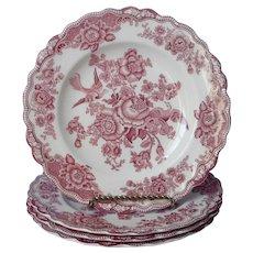 Crown Ducal Bristol Pink Transferware 4 Dinner Plates Plus Vintage English China