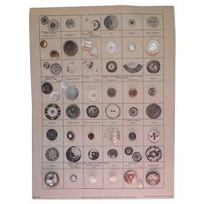 Antique Buttons Mother Of Pearl Collector's Card National Button Society