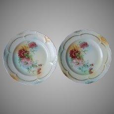 Pair Plates Mistletoe Mums Aqua Antique China