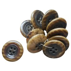 Vegetable Ivory Tagua Nut Buttons Striped Set 10 Antique