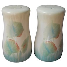 Pfaltzgraff Garden Of Eden Salt Pepper Shakers Vintage Pair