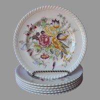 Johnson Brothers Garden Bouquet 6 Salad Plates Vintage England