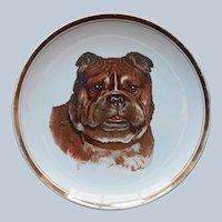 Antique Pug Dog Cabinet Plate Sevres China Company Ohio