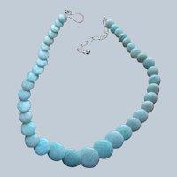 Jay King Desert Rose Trading Quartzite Sterling Silver Necklace Aqua Graduated Discs
