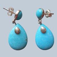 Jay King Turquoise Sterling Silver Earrings Pierced Drop Desert Rose Trading