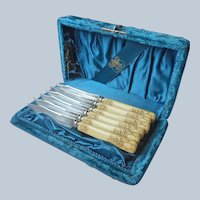 Set Fruit Knives Velvet Fitted Box Celluloid Handles Antique Silver Plated