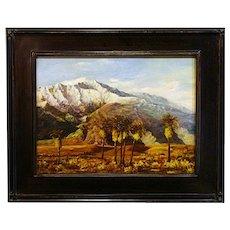 Karl Weidhofer   Mt. San Gorgonio in Winter