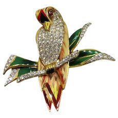 1940's Coro Craft Enamel and Pave Rhinestones Parrot Fur Clip