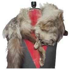 Gorgeous 1920's Silver Fox Pelt Shoulder Wrap/Stole