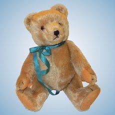"""Vintage 14"""" Steiff Teddy Bear"""