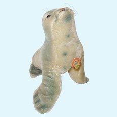 Vintage Medium Size Steiff Robby Seal