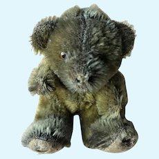 "Antique 5"" Miniature Straw Filled Steiff Teddy Bear"