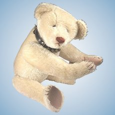 Antique Hecla American Teddy Bear, White, ULTRA Rare MUSEUM QUALITY 1906-08 COMPLETELY Original!