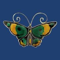 """David Andersen D-A 1&3/4"""" Enamel Butterfly Brooch / Pin, Norway, Gold Vermeil"""