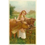 Postcard of Lady with Cows 1909 - Sweet Sixteen