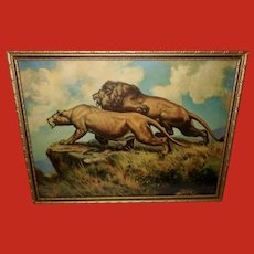 Two Majestic Lions on Mountain - Black and Gold Frame
