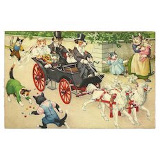 Max Kunzli Dressed Cats Postcard by Mainzer - Bridal Carriage