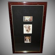 Three Images of Sealyham Terriers in Wood Frame