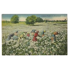 Black Americana Postcard of Cotton Pickers - Red Tag Sale Item