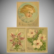 Three Small Unframed Chromolithographs - Cherub and Flowers
