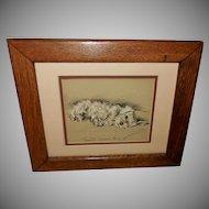 Lucy Dawson Vintage Print of Reclining Sealyham Terrier Dog