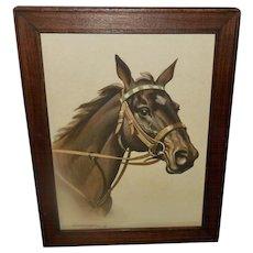 Koekkoek Vintage 1939 Print of Handsome Brown Horse