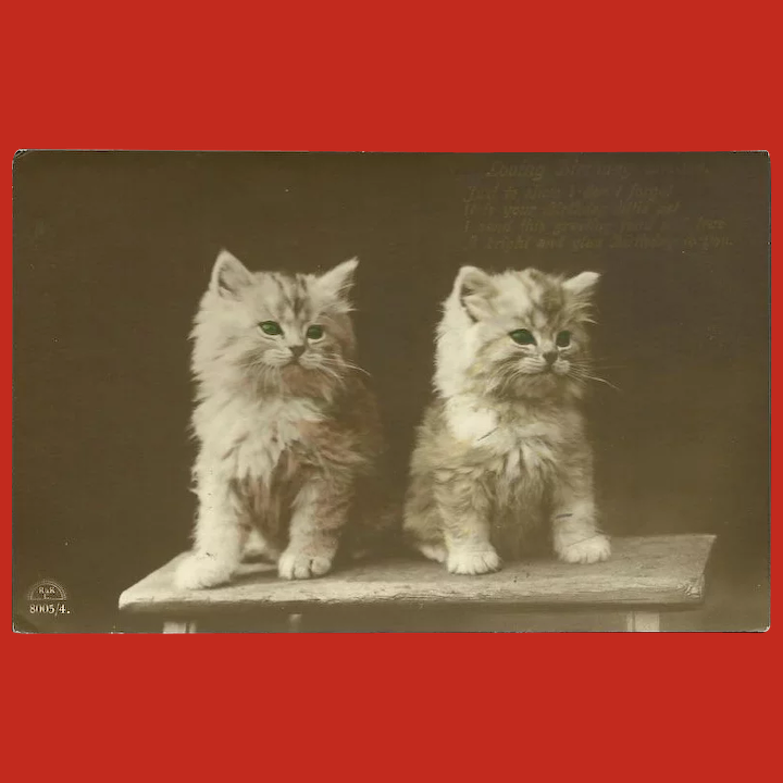 Prime Vintage Birthday Wishes Sepia Postcard With Two White Kittens On A Personalised Birthday Cards Epsylily Jamesorg