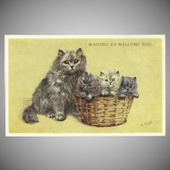 Mabel Gear Vintage Postcard of Cat and Three Kittens in Basket