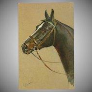 Artist Signed Vintage Stehli Postcard of Brown Horse by Rivst