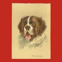 Continental French Postcard of Saint Bernard Dog by Henri Anglade