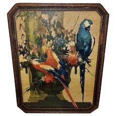 Stark Davis Vintage Print of Macaw Parrots in Octagonal Frame