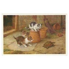 Edgar Hunt Vintage Postcard of Kittens and Turtle