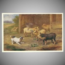 Edgar Hunt Vintage Postcard of Dog with Pigs