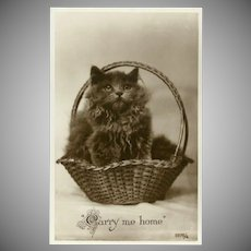 Vintage British Photo Postcard of Kitten in Basket