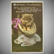 Rotary Photo Birthday Postcard with Two Kittens