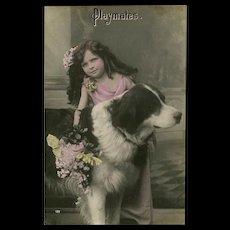 Glossy German Photo Postcard of Girl with Dog Playmates