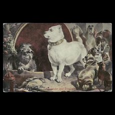 Landseer 1907 Undivided Postcard of Dogs Alexander and Diogenes