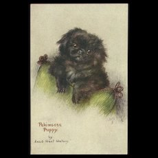 Raphael Tuck Oilette Postcard of Pekingese Puppy Dog by Maud Watson