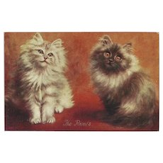 Vintage British Postcard of Two Cats titled The Rivals