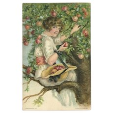 Alice Fidler Vintage Postcard of Lady Picking Fruit