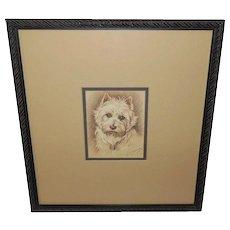 Westie Dog Vintage Etching Print by Lucy Dawson