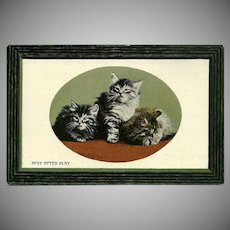 Vintage British Postcard of Three Kittens at Rest