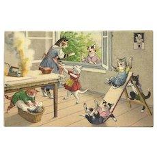 Max Kunzli Dressed Cat Postcard of Ironing Bedlam