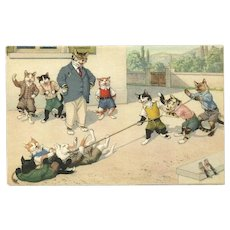 Max Kunzli Dressed Cat Postcard of Tug of War